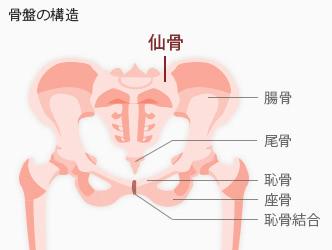 腰痛 生理 い 痛